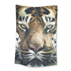 Tiger Bengal Stripes Eyes Close Small Tapestry