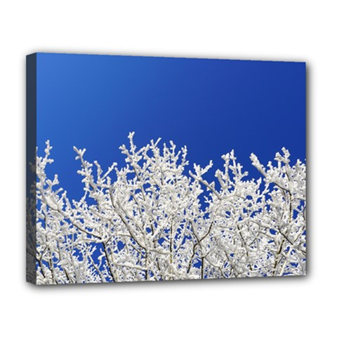 Crown Aesthetic Branches Hoarfrost Canvas 14  X 11