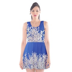 Crown Aesthetic Branches Hoarfrost Scoop Neck Skater Dress