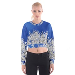 Crown Aesthetic Branches Hoarfrost Cropped Sweatshirt