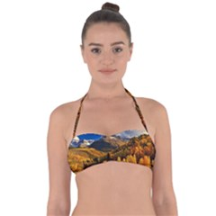 Colorado Fall Autumn Colorful Halter Bandeau Bikini Top