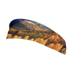 Colorado Fall Autumn Colorful Stretchable Headband