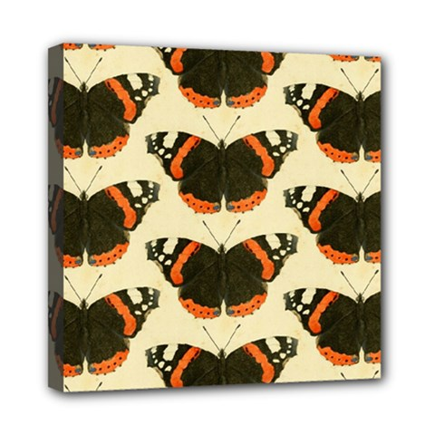 Butterfly Butterflies Insects Mini Canvas 8  X 8