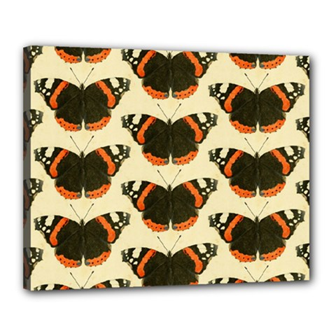 Butterfly Butterflies Insects Canvas 20  X 16