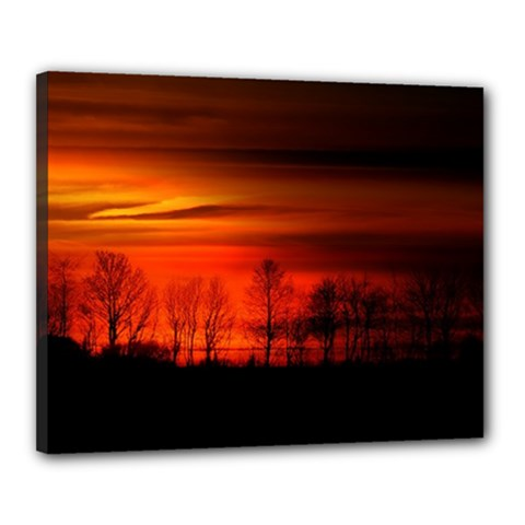 Tree Series Sun Orange Sunset Canvas 20  X 16