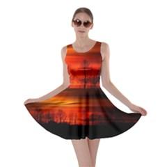Tree Series Sun Orange Sunset Skater Dress