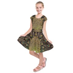 Peacock Feathers Wheel Plumage Kids  Short Sleeve Dress