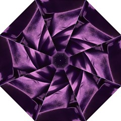 Shiny Purple Silk Royalty Hook Handle Umbrellas (medium)