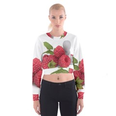 Fruit Healthy Vitamin Vegan Cropped Sweatshirt
