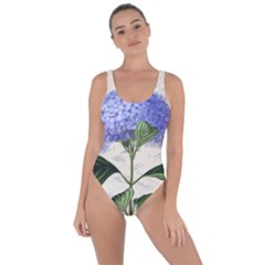 Vintage Shabby Chic Dragonflies Bring Sexy Back Swimsuit