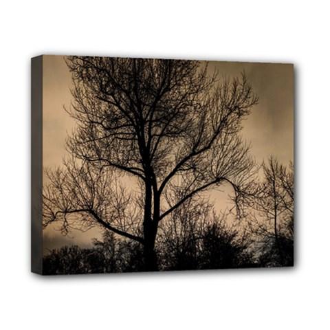 Tree Bushes Black Nature Landscape Canvas 10  X 8