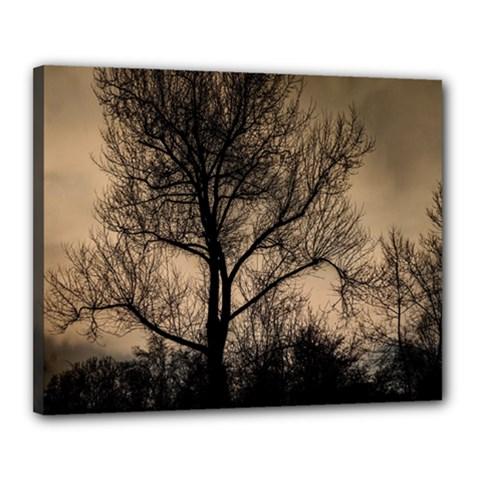Tree Bushes Black Nature Landscape Canvas 20  X 16