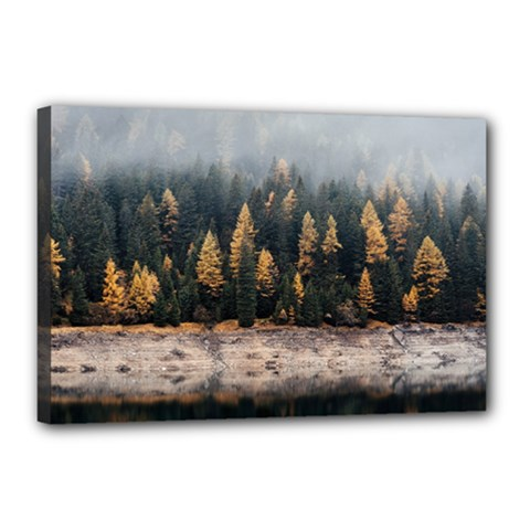 Trees Plants Nature Forests Lake Canvas 18  X 12