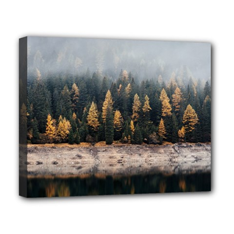 Trees Plants Nature Forests Lake Deluxe Canvas 20  X 16