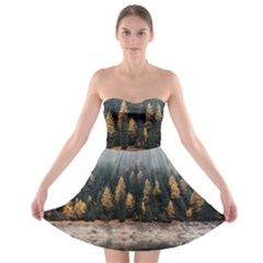 Trees Plants Nature Forests Lake Strapless Bra Top Dress