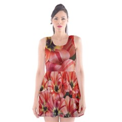 Tulips Flowers Spring Scoop Neck Skater Dress