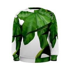 Plant Berry Leaves Green Flower Women s Sweatshirt
