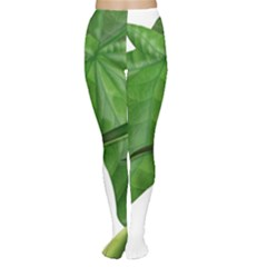 Plant Berry Leaves Green Flower Women s Tights