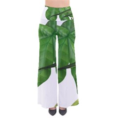 Plant Berry Leaves Green Flower Pants