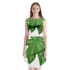 Plant Berry Leaves Green Flower Sleeveless Chiffon Dress