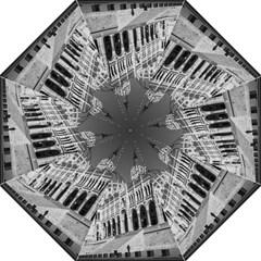 Architecture Parliament Landmark Straight Umbrellas