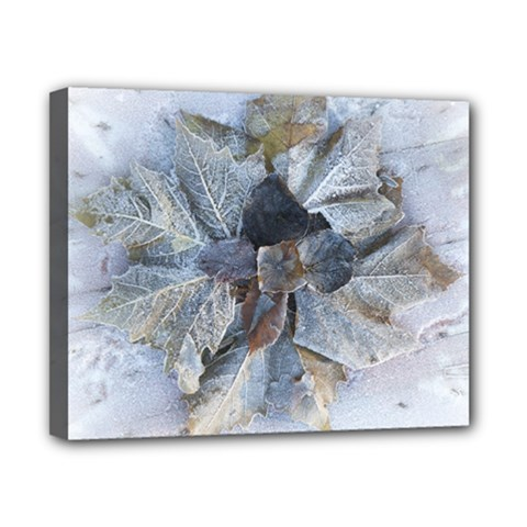 Winter Frost Ice Sheet Leaves Canvas 10  X 8