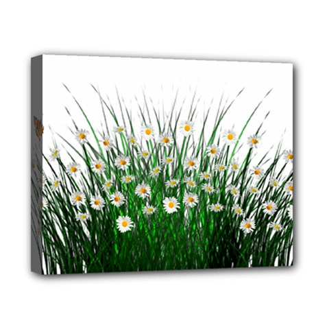 Spring Flowers Grass Meadow Plant Canvas 10  X 8