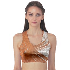 Abstract Lines Background Mess Sports Bra