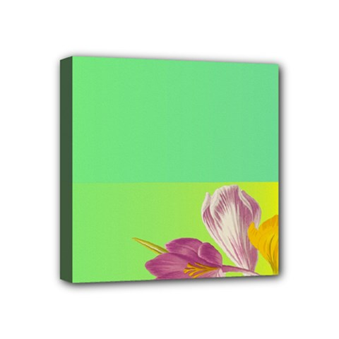 Background Homepage Blossom Bloom Mini Canvas 4  X 4