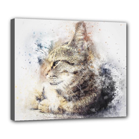 Cat Animal Art Abstract Watercolor Deluxe Canvas 24  X 20