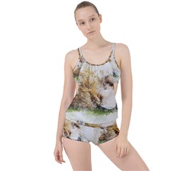 Bear Baby Sitting Art Abstract Boyleg Tankini Set