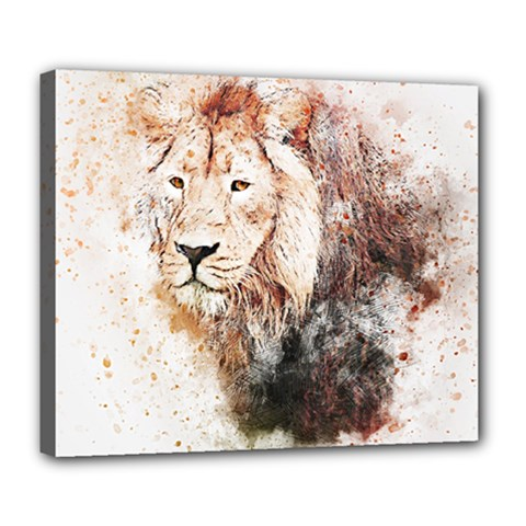 Lion Animal Art Abstract Deluxe Canvas 24  X 20