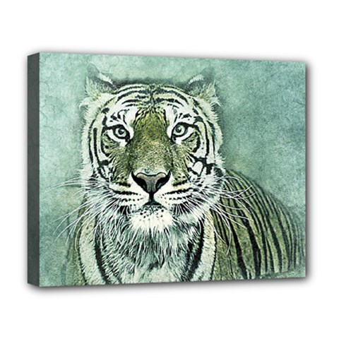 Tiger Cat Art Abstract Vintage Deluxe Canvas 20  X 16