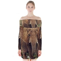 Elephant Animal Art Abstract Long Sleeve Off Shoulder Dress