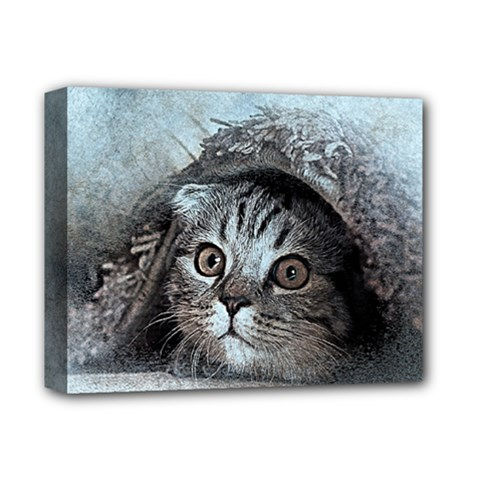 Cat Pet Art Abstract Vintage Deluxe Canvas 14  X 11