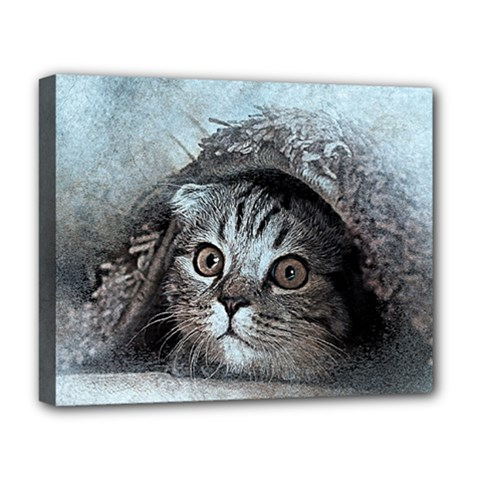 Cat Pet Art Abstract Vintage Deluxe Canvas 20  X 16