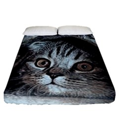 Cat Pet Art Abstract Vintage Fitted Sheet (queen Size)