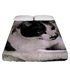 Cat Pet Art Abstract Vintage Fitted Sheet (california King Size)