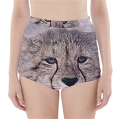 Leopard Art Abstract Vintage Baby High Waisted Bikini Bottoms