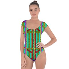 Gift Wrappers For Body And Soul In  A Rainbow Mind Short Sleeve Leotard