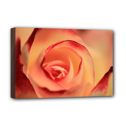 Rose Orange Rose Blossom Bloom Deluxe Canvas 18  X 12