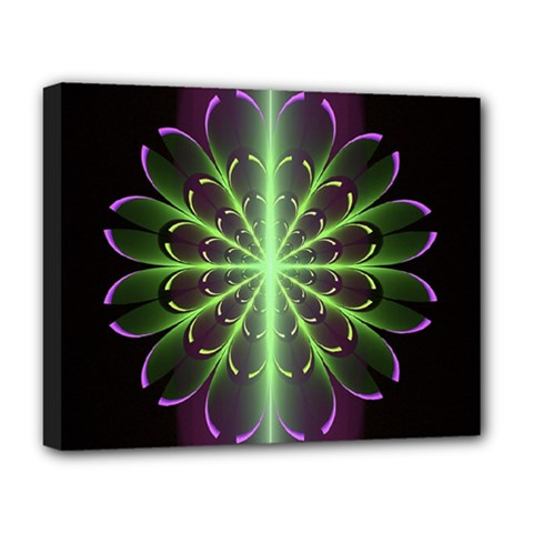Fractal Purple Lime Pattern Deluxe Canvas 20  X 16