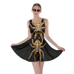 Nsect Macro Spider Colombia Skater Dress