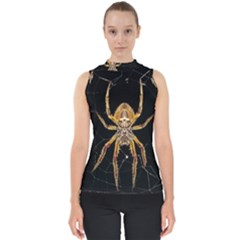 Nsect Macro Spider Colombia Shell Top