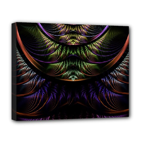 Fractal Colorful Pattern Fantasy Deluxe Canvas 20  X 16