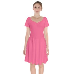 Pink 16 A | Light Pink Short Sleeve Bardot Dress