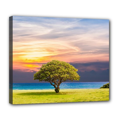 Tree Sea Grass Nature Ocean Deluxe Canvas 24  X 20