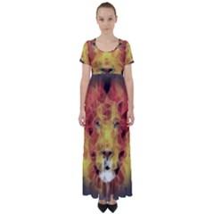 Fractal Lion High Waist Short Sleeve Maxi Dress