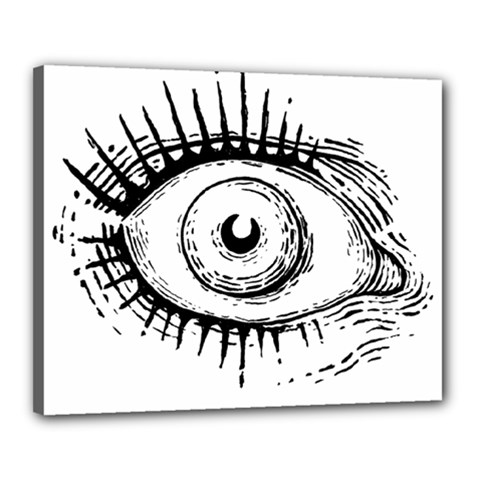 Big Eye Monster Canvas 20  X 16