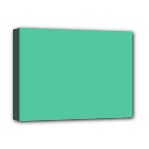 Seafoamy Green Deluxe Canvas 16  X 12